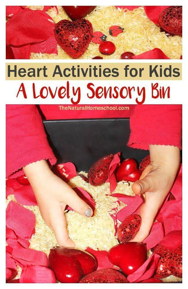 Heart Activities