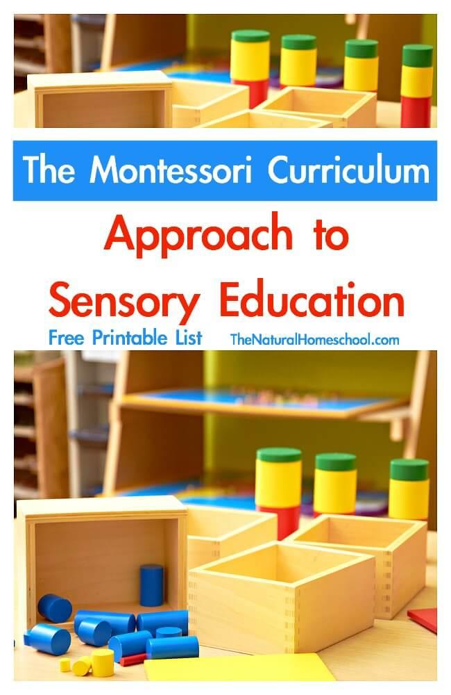 Sensory Education
